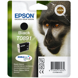 Epson Ink Cartridge T0891 Black
